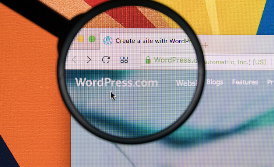Why WordPress is the Most Popular CMS?